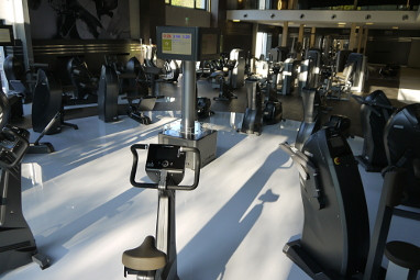 ESSENSIO Hotel : Fitness-Center